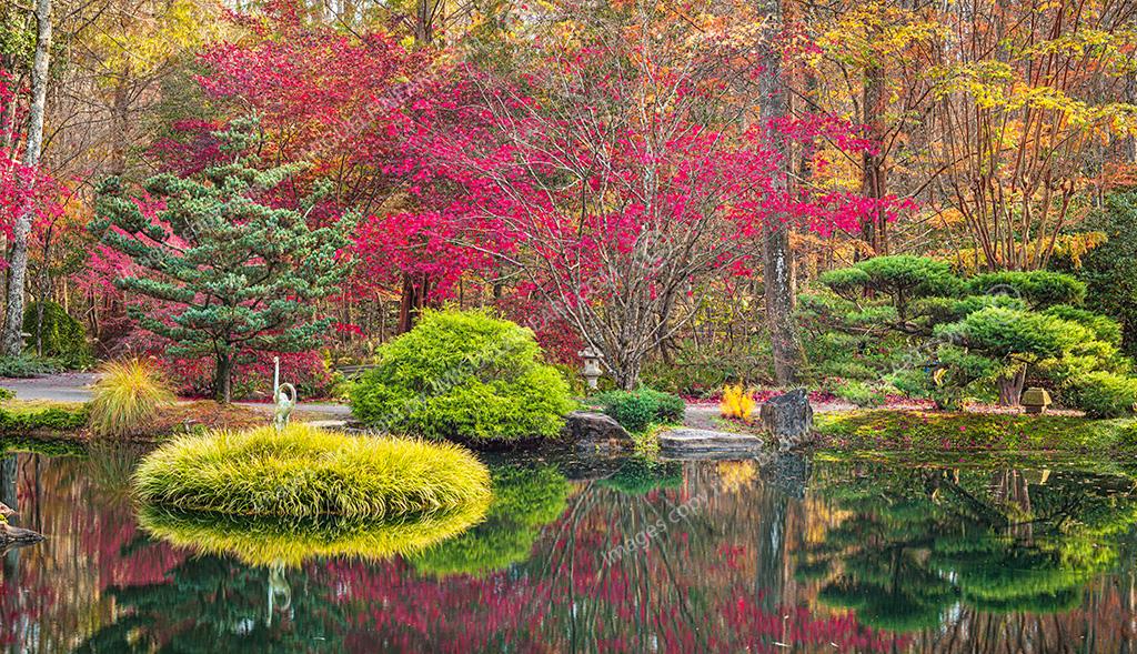 CF059152_Japanese-Garden_Fall