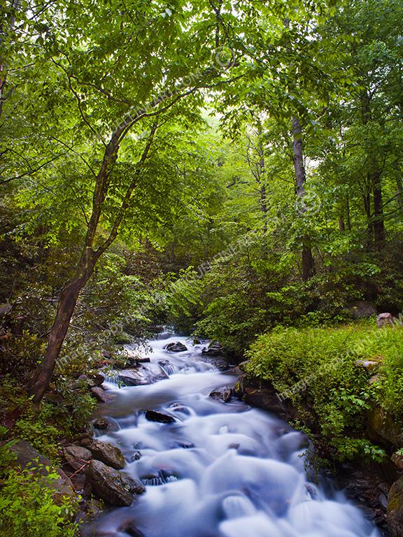 NC_waterfall_V