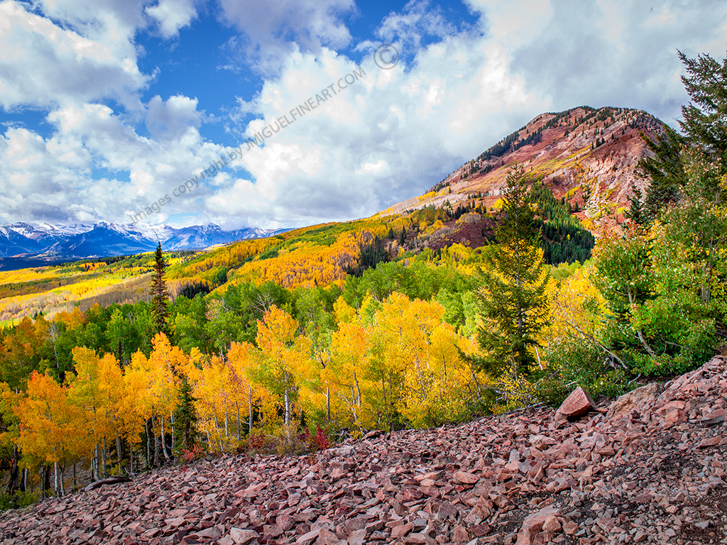 CF058508_aspens_mountains_Fall