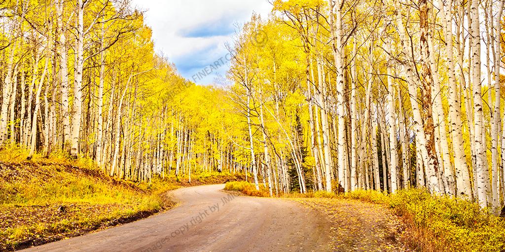 CF058789_aspen-road_Fall