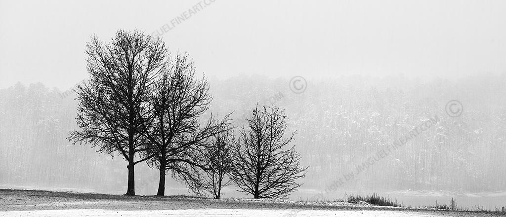 Winter-at-the-lake